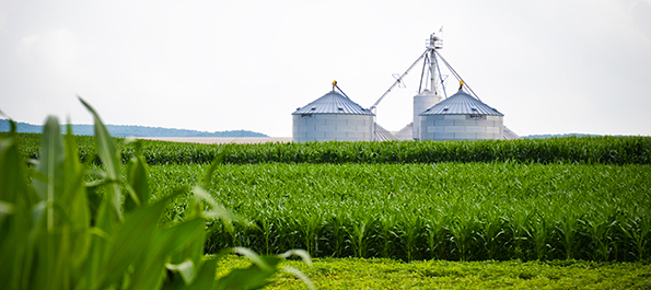 Cumberland County Agriculture